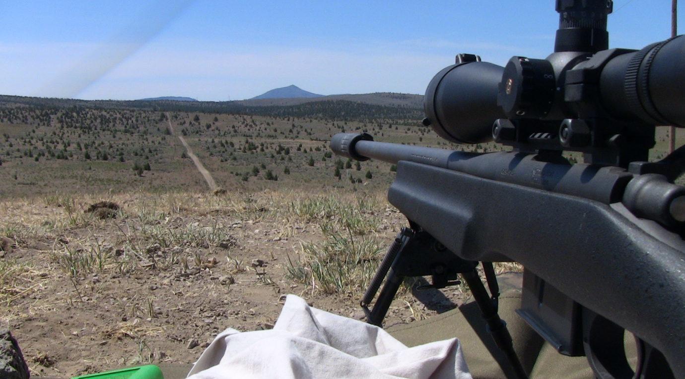 best scope under 300