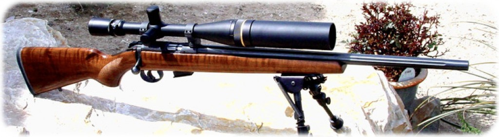 best scope for 17 hmr review
